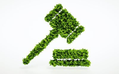 Uloga prava u zaštiti životne sredine